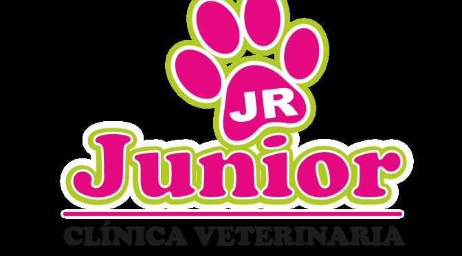 Junior – Veterinary Clinic
